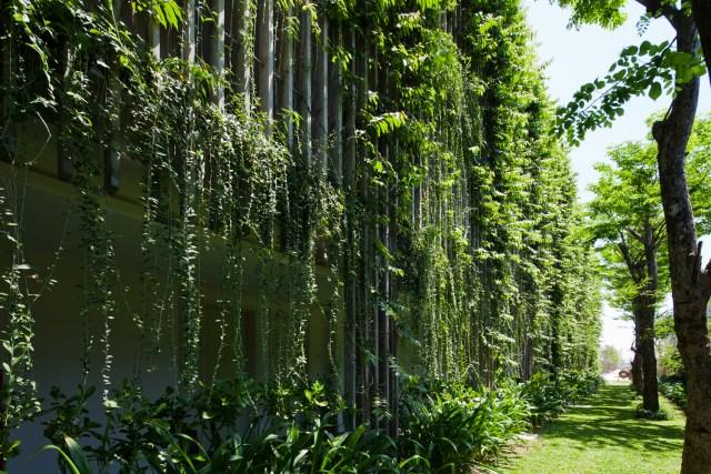 Além da fachada verde, as copas de árvores auxiliam no isolamento do edifício. (Fonte: Archdaily).