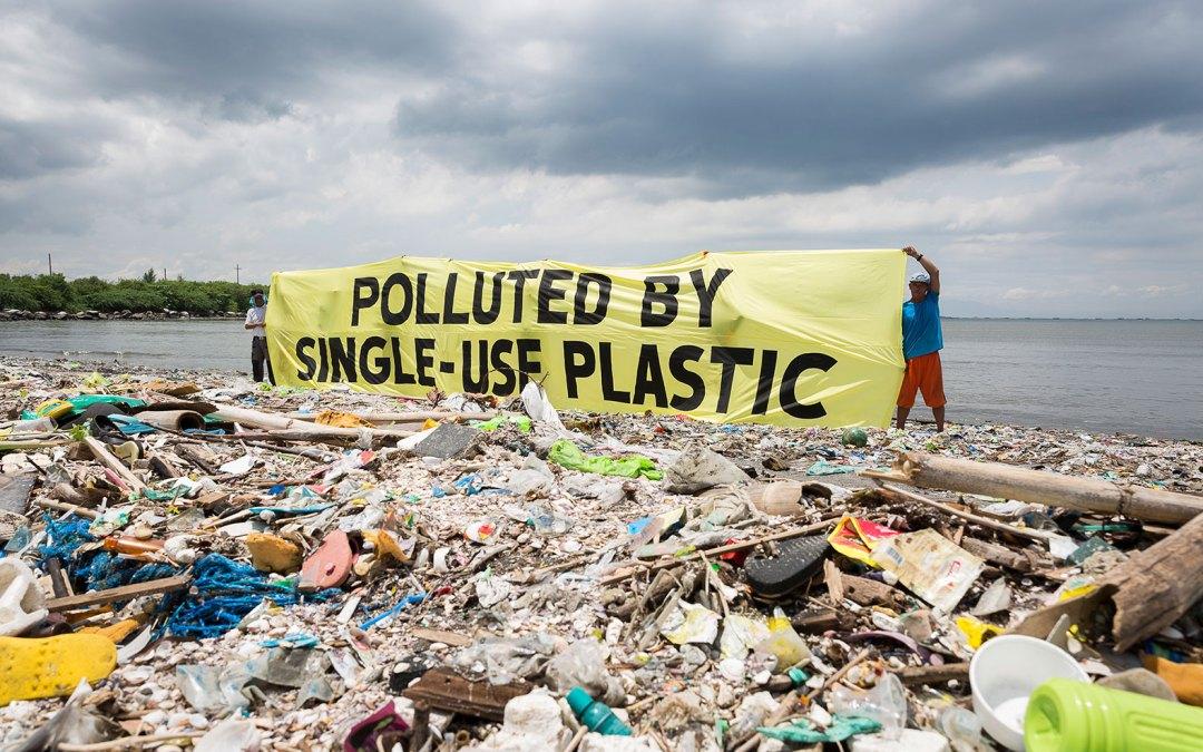Plastic ban not enough, implementation crucial: Dia Mirza, UN Ambassador