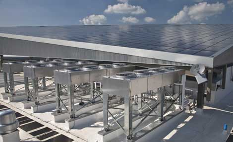 Tamil Nadu Beaten by Karnataka as Top Renewable and Solar Energy Hub