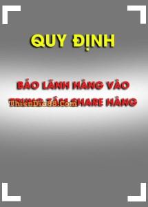QUY ĐỊNH BẢO LÃNH HÀNG VÀO TTSH
