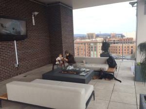 downtown greenville sc restaurant review dog training