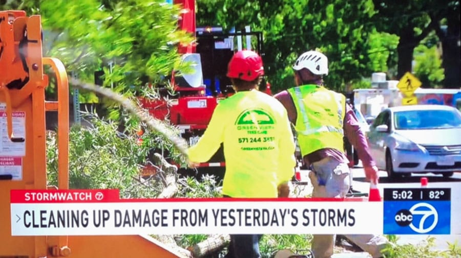 Green Vista Tree Care crews in northern Virginia cleaning up storm damage on ABC 7 TV coverage