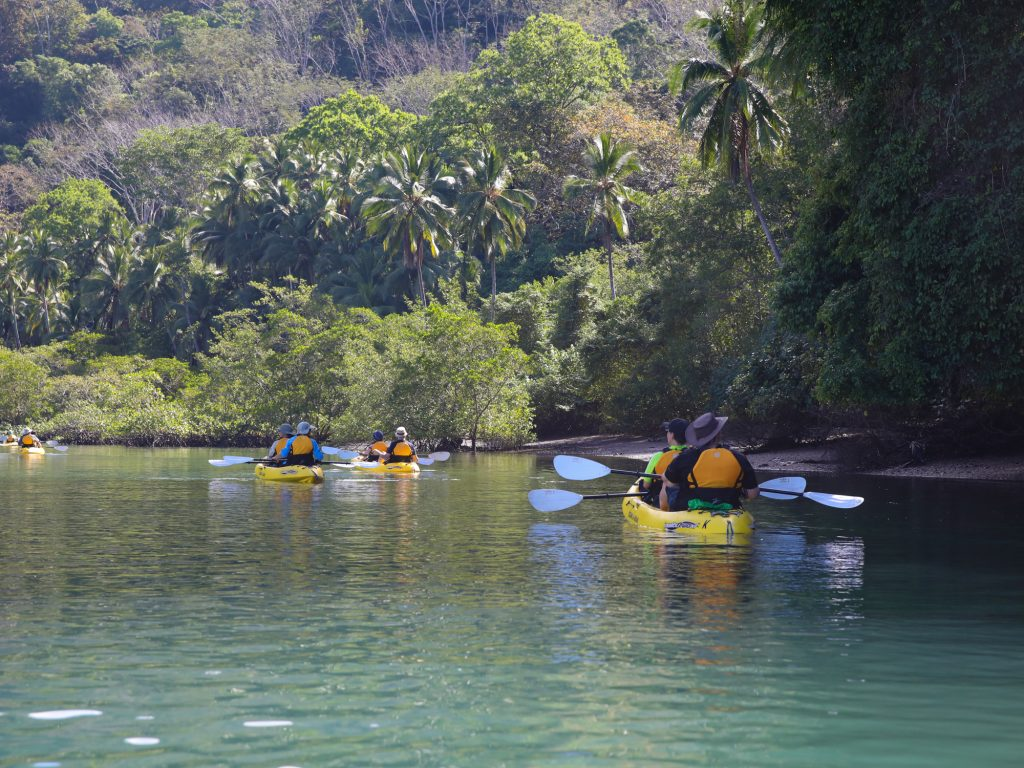 Kayaking in the Jungle in Costa Rica