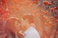 pomegranate-orchard-photos-02