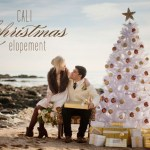 cali winter elopement