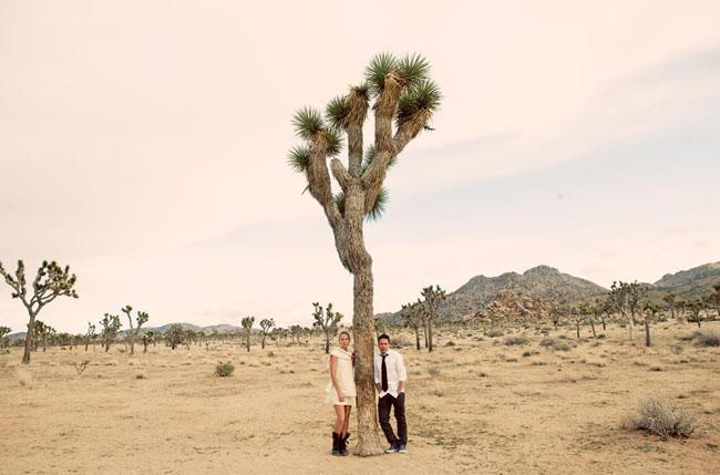 joshua tree elopement