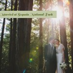 Sequoia National Park Wedding