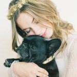 hushed commotion dog collars