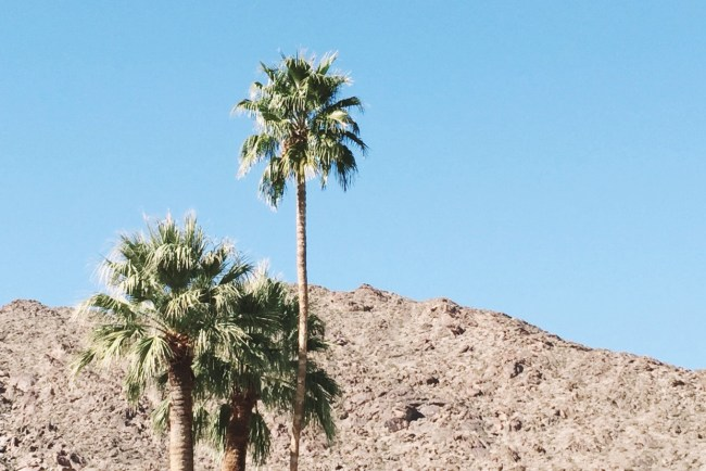 A Weekend in Palm Springs at The Rowan Palm Springs
