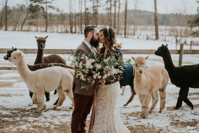 Alpaca Winter Wedding Inspiration