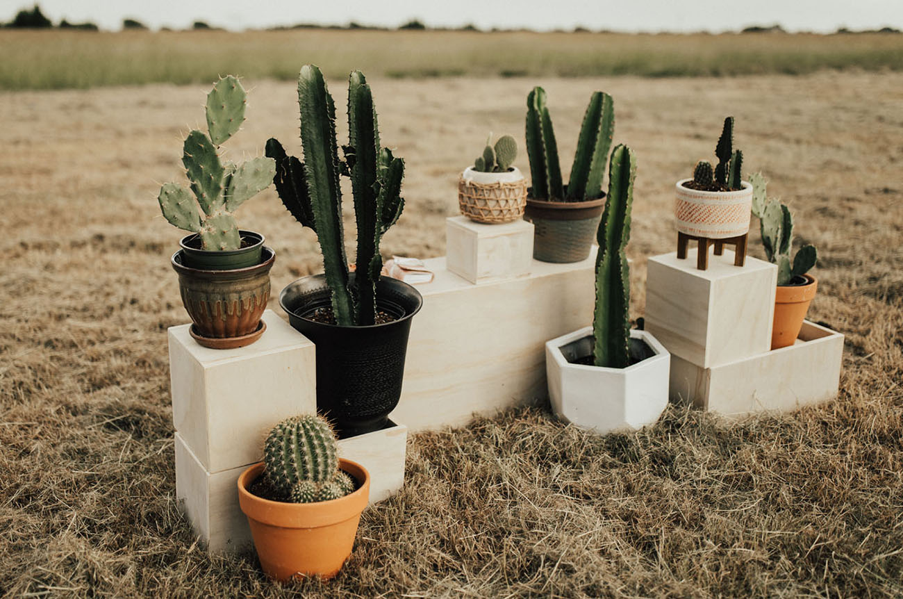 Bring the Boho Home Their Backyard Wedding was Inspired by Marfa  Green Wedding Shoes