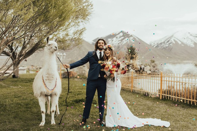 Colorful Llama Wedding Inspiration