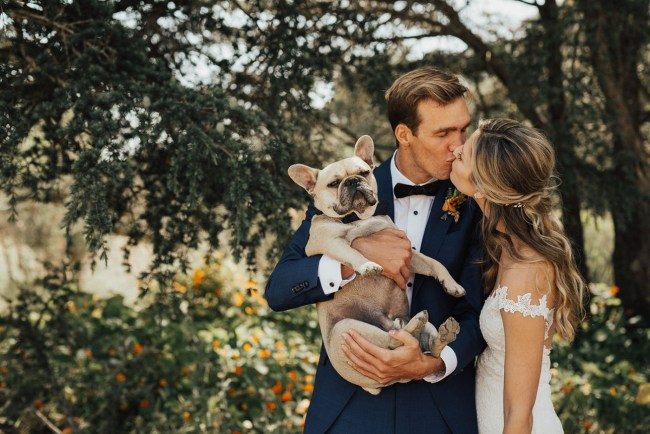 dog with newlyweds