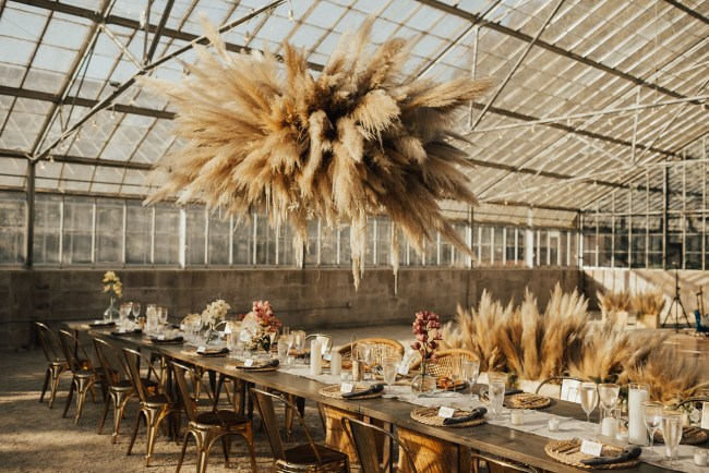 Mono-floral hanging pampas grass installation