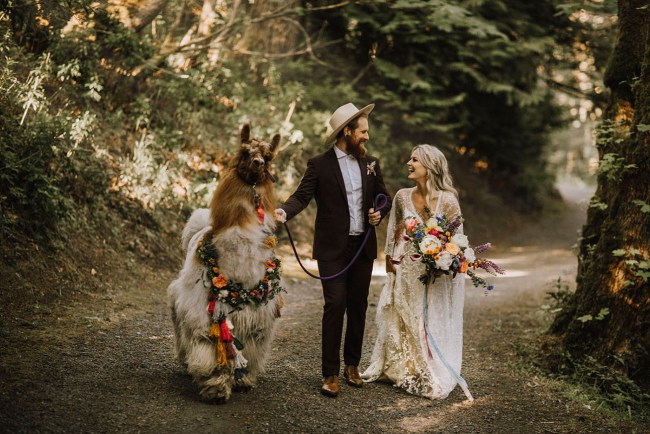 Boho Llama Wedding Inspiration