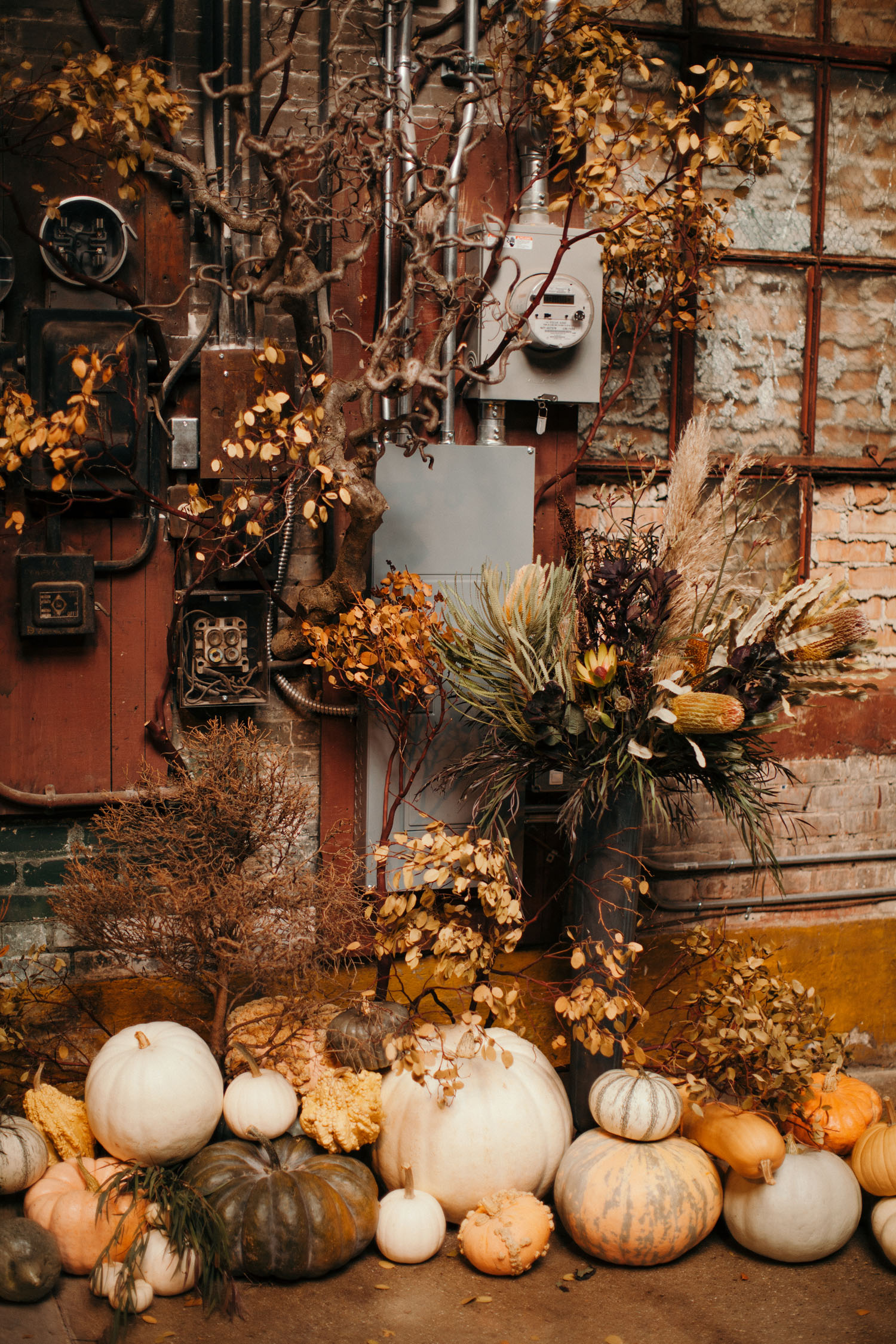 pumpkin ceremony backdrop