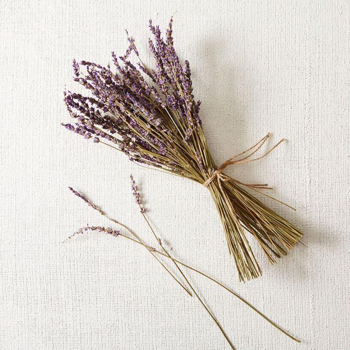 bunch of dried lavender flowers you can buy online from West Elm