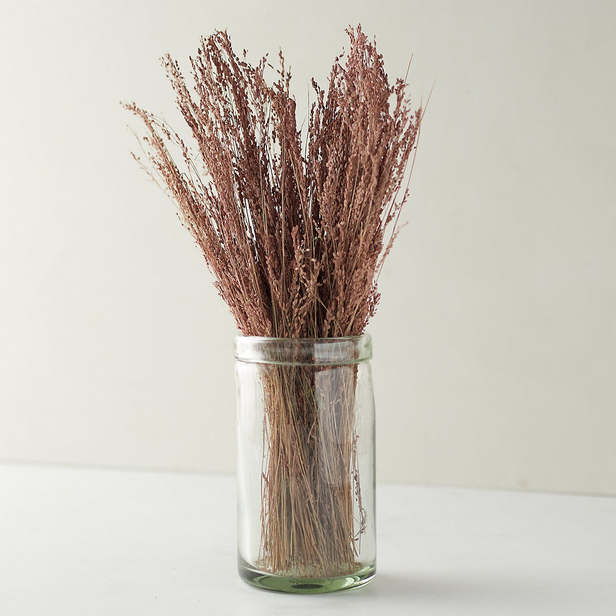 blush preserved star grass dried flowers bunch from Terrain