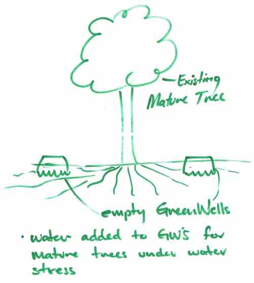 small resolution of it is not recommended that greenwells for mature trees are used as explained above in areas that are likely to carry a lot of foot traffic because of the