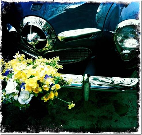 daf lw-car