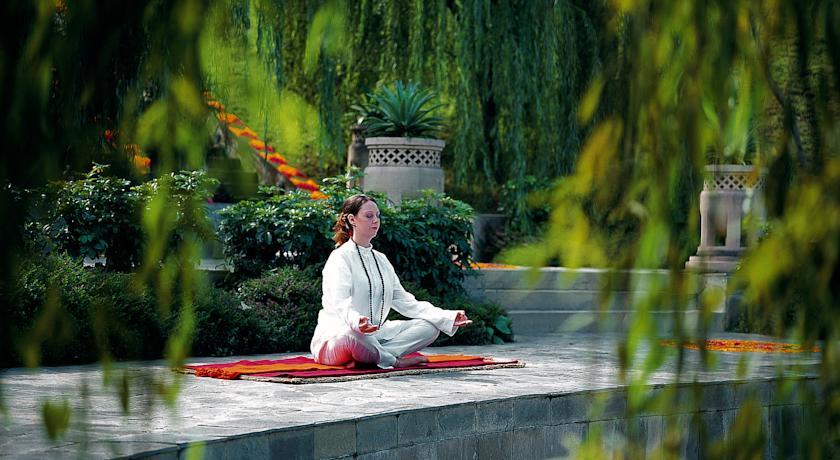 Yoga_ananda-himalayas-rishikesh