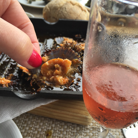 Limpets and Rosé-perfect!