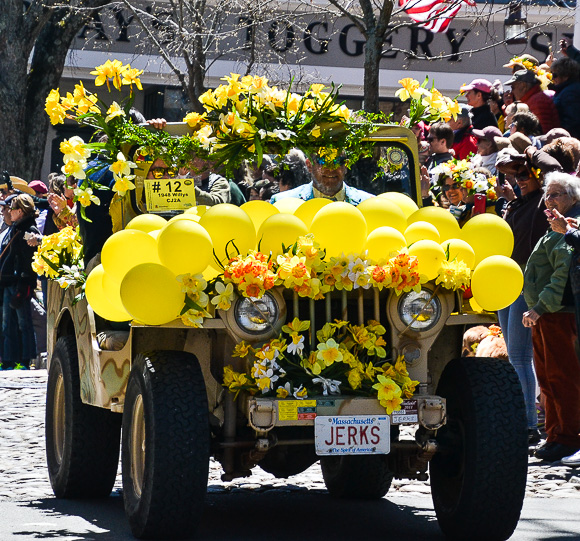 Vanity plates at the Nantucket Daffodil Festival