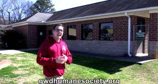 Gwd Humane Society Valentine's Special
