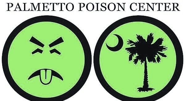 Palmetto Poinson Center