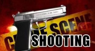 Greenwood Shooting Update