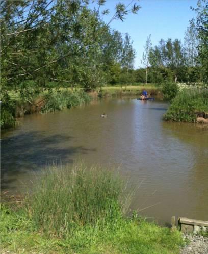 Tollerton Fishing Lake