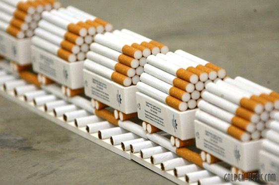 производство табака