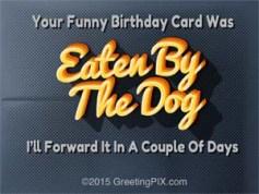 #16 Eaten By The Dog 72dpi