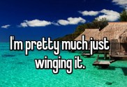 are-you-just-winging-it-2