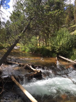 Elbert Creek