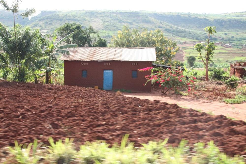I fear I am falling in love with Rwanda. (6/6)