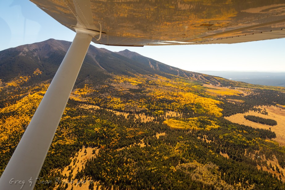 "Tour Autumn Flaming Aspens & Red-Rock Sedona by ""Flying Carpet"""