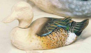 Jeffrey Moores Teal size Ducks