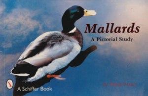 Mallards, A Pictorial Study