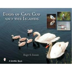 The Birds of Cape Cod & The Islands