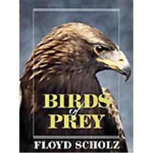 Birds of Prey , Scholz