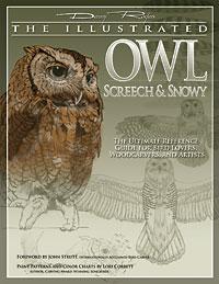 Illustrated Owl: Screech & Snowy