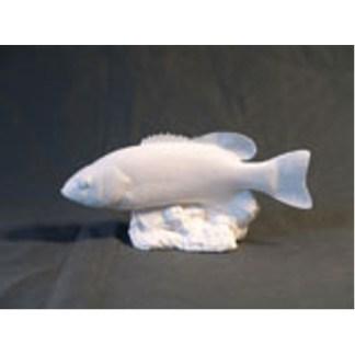 SM. Mouth Bass Fish by Josh Guge, Study Cast