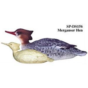 Merganser Hen, Study Cast