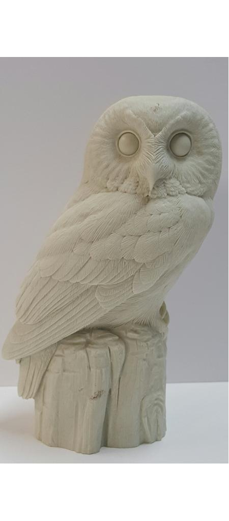 Owl, Saw-Whet (2/3 scale) - Bob Guge study cast
