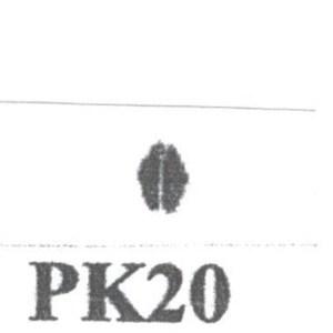 Pat Kennedy's Woodburning Snake Scale Tips PK - 20 RT