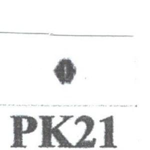 Pat Kennedy's Woodburning Snake Scale Tips PK - 21 RT