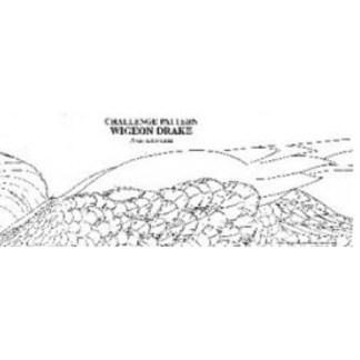 Pat Godin, Bufflehead Hen Challenge Pattern (open bill, exposed