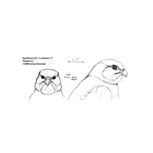 Falcon, Gyrfalcon  1/2 size, Jerry Simchuk Pattern