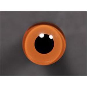 Tohickon Glass Eyes Off-Wire #112 - 13mm Hazel M/P